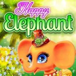 Happy Elephant Care