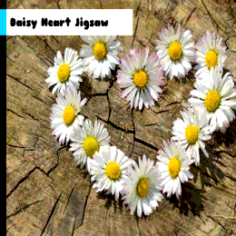 Daisy Heart Flowers Jigsaw