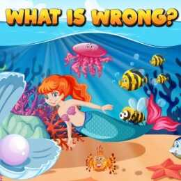 What Is Wrong 2